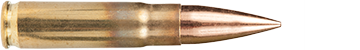 21 Ammo